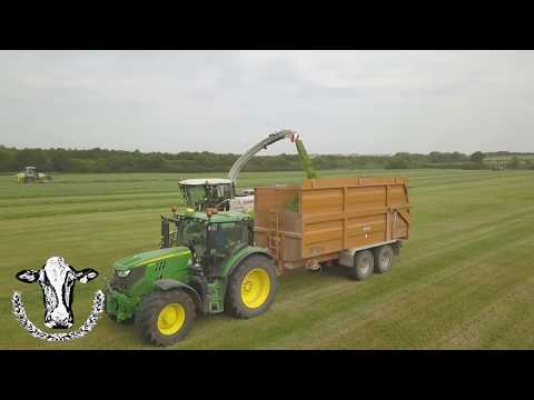 3rd Cut Silage 2018, Mowing, Raking, Chopping All In One field