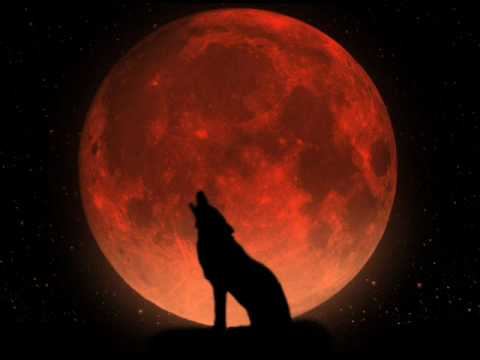:Wumpscut: - Wolf [with lyrics]