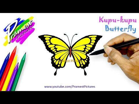 Kupu Kupu Cara Menggambar Dan Mewarnai Gambar Hewan Untuk Anak Youtube