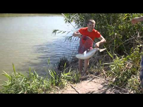 рыбалка видео только ставропольский край