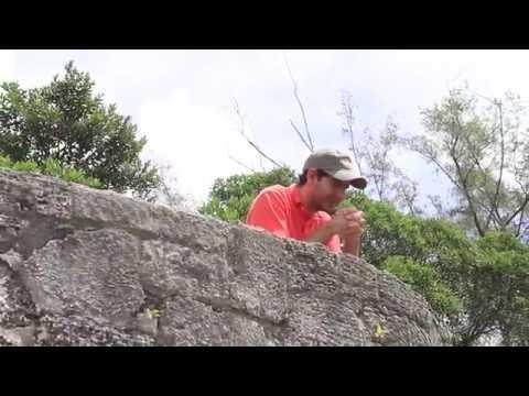 Gio Martinez - Como Me Amas Tú - 8DS (Video clip Oficial)