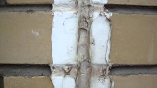 """Фильм """"Дурак-2"""": жителей Твери переселяют в непригодное общежитие"""