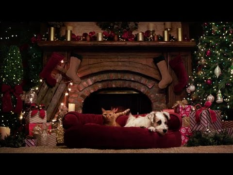 Preview A Very Happy Yule Log Hallmark Movies