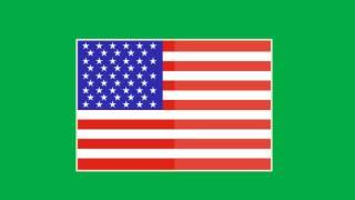 USA Flag Animated Green Screen