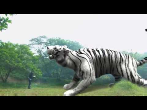 Promo 7 Manusia Harimau (3 Maret 2015)