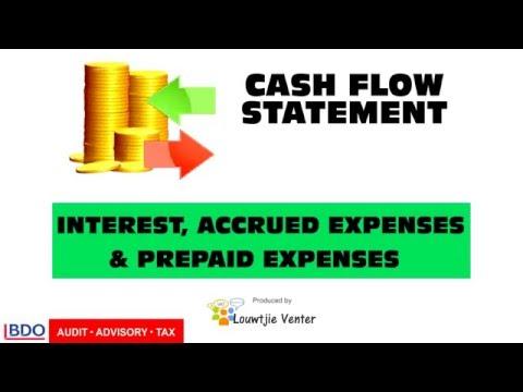 CASH FLOW STATEMENT 3 - Interest, Accrued Expenses & Prepaid Expenses
