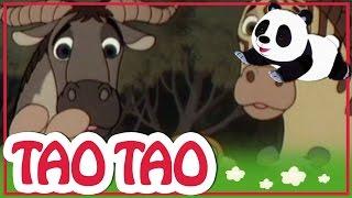 Tao Tao - 2 - ליטל ארנב, אריה גדולה