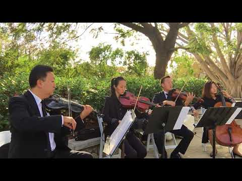 Red is the Rose - Jopa String Quartet