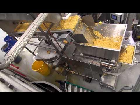 Tortilla Chip Line 2500 Lb/H