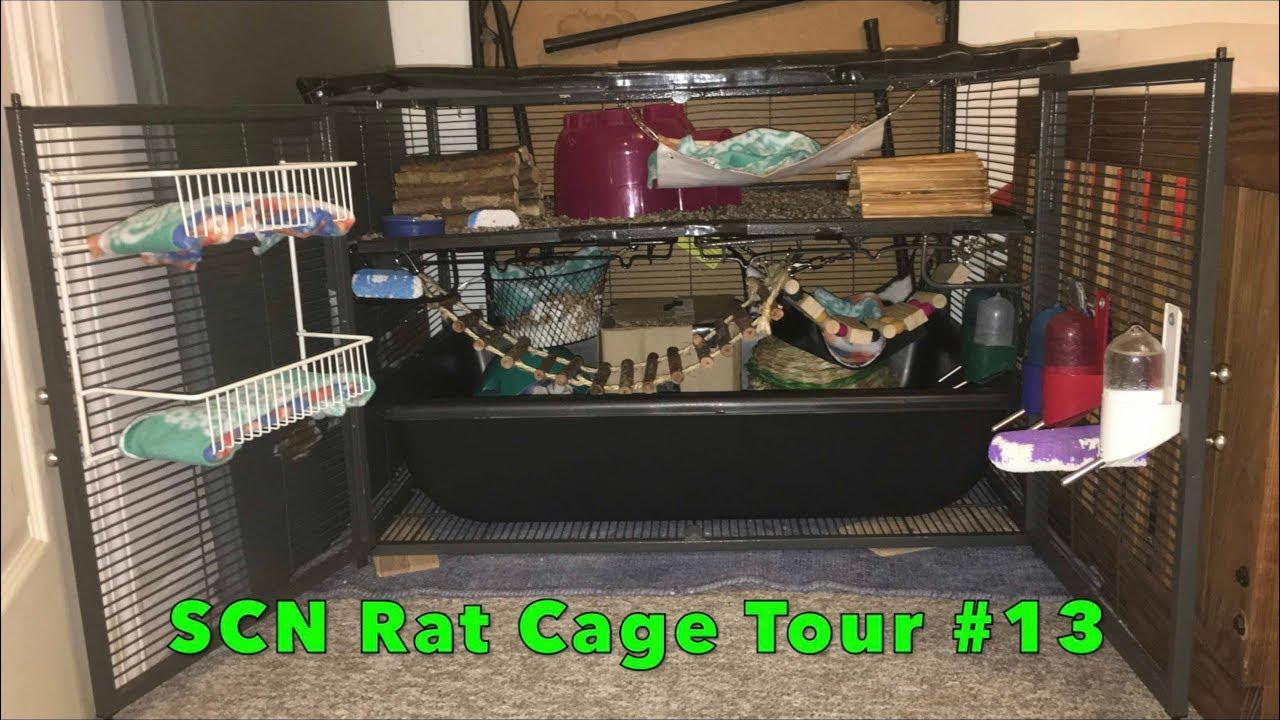 SCN Rat Cage Full 2 Level Tour 13