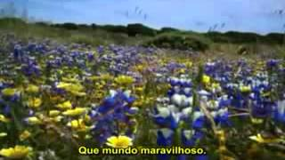 Musica do Mágico de Oz, A mais linda musica(legendada)