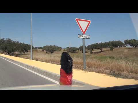 Portela do Lobo Campo de Guerreiros Aldeia dos Palheiros Ourique IC1 E01 Portugal 24.5.2017 #1199