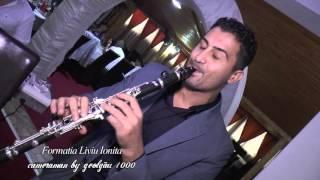 Formatia Liviu Ionita - Instrumentala LIVE 100