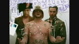 cobrastyle teddybears lyrics