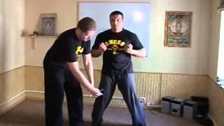 Уроки Вин Чун. Боевые искусства. Подробное описание и аппликации начала первой части Сиу