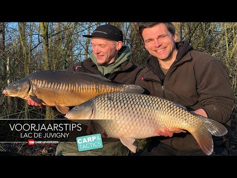 Juvigny, Marne Valley Carpfishing voorjaarstips! Carp Whisperer TV