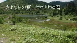 サヨナラの夏~コクリコ坂から~ オカリナ練習 thumbnail