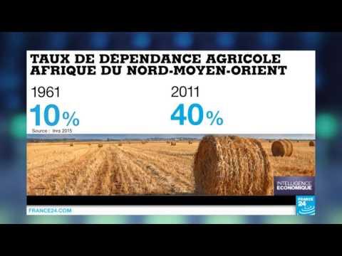 Sécurité alimentaire : la dépendance de l'Afrique du Nord et du Moyen-Orient
