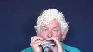 Tims Tiny Tunes #214: Jazz waltz, Level 2, harmonica play-along lessons | jazz harmonica licks