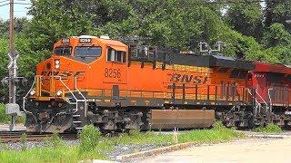 BNSF & CP Pull CSX Train In Baltimore City