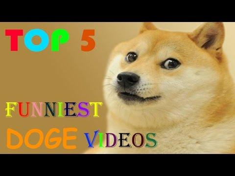 Top 5 Funniest DOGE videos