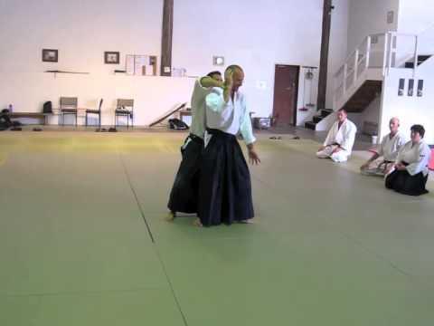 Aikido with Max Eriksson Sensei in Helensville, NZ, December 2011
