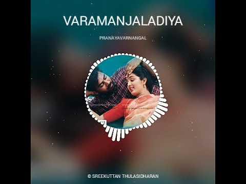 Romantic Malayalam Whatsapp Status   Varamanjaladiya ravinte   Pranaya Varnangal