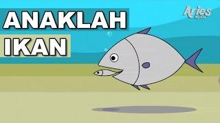 Lagu Kanak-Kanak Alif & Mimi - Anaklah Ikan (Animasi 2D)