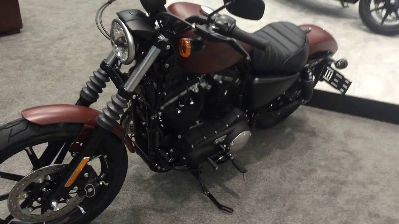 2017 harley-davidson iron 883 in red iron denim from san diego h-d