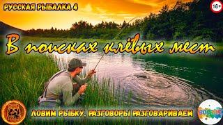 ОСЁТР СОМ АХТУБА Ловим под приятный разговор Русская рыбалка 4 18