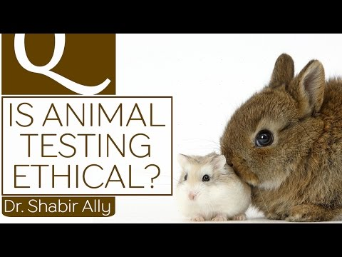 the ethics of animal testing Vice news gained rare access to the biomedical primate research facility in holland, to see what happens to the monkeys inside how much animal suffering is justified to save human lives.