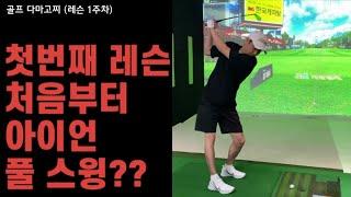 [골프 다마고찌 1주차…