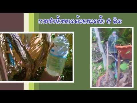 การทำน้ำหยดด้วยขวดน้ำขนาด6ลิตร