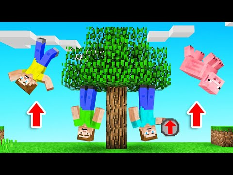 Minecraft BUT The GRAVITY Has Been SWITCHED! (upside down)