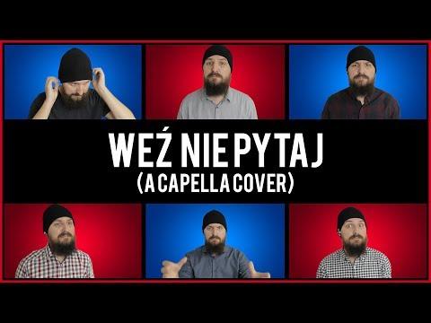 Paweł Domagała - Weź Nie Pytaj (acapella Cover)