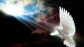 Roh kudus hadir disini Mengalir di Bait Suci