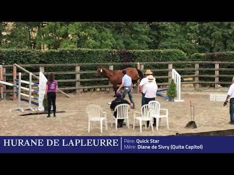 HURANE DE LAPLEURRE