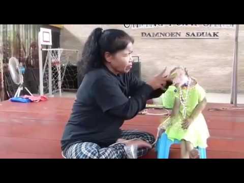 Shanta Bai Full Video Song