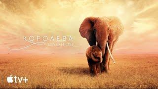 Сериал «Королева слонов»– официальный трейлер | AppleTV+