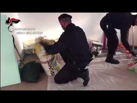 Detenzione abusiva di armi e munizioni, un arresto e una denuncia a Vibo