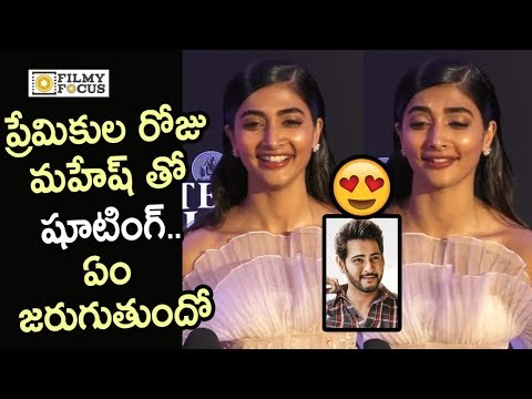 Pooja Hegde about her Valentine's Day Plans with Mahesh Babu on Maharshi Movie Sets - Filmyfocus.com