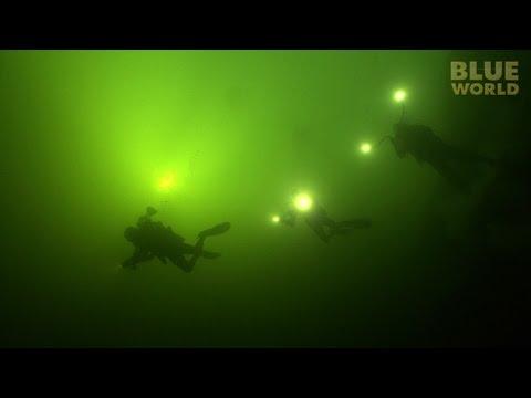 Cousteau's Blue Hole | JONATHAN BIRD'S BLUE WORLD