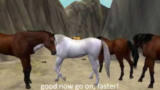 Repeat youtube video Zt2:Wild Horses 1 part 4