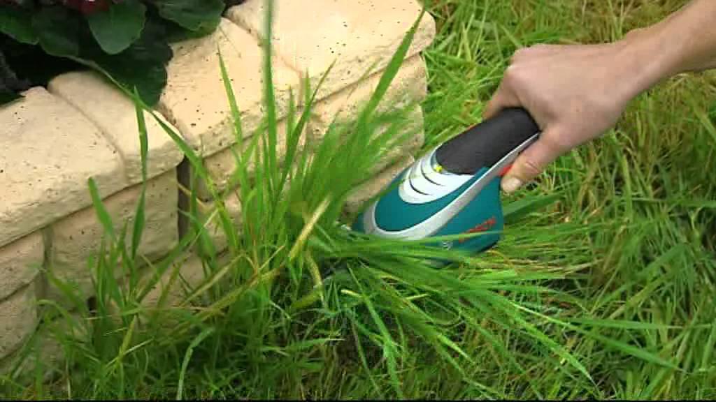 Bosch trädgård - Sladdlös busk- & grässax - Isio