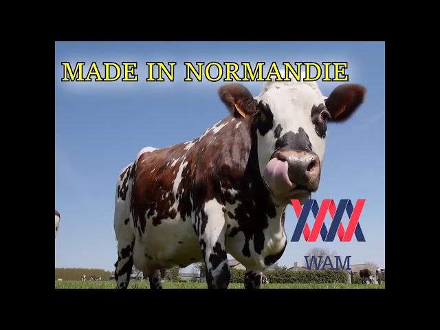 La Caencaneuse - Made In Normandie