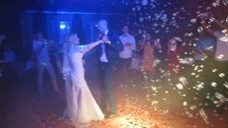 ДЫМ машина и мыльные ПУЗЫРИ на свадьбу, первый танец молодожёнов ( Белая Церковь, Васильков, Тараща)