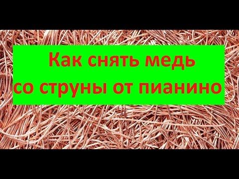 Лекарственные Травы Кавказа - Горячий Ключ 2016 - YouTube