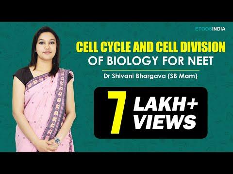 NEET I Biology I Cell Division I Shivani Bhargava (SB) Mam From ETOOSINDIA.COM thumbnail