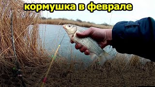 КАРАСЬ В ФЕВРАЛЕ НА ДОНКУ карась зимой на донку ловля карася зимой рыбалка 2021 рыбалка на реке