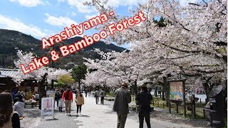 Kyoto | Arashiyama Lake & Bamboo Forest | Japan - Living 4 Today